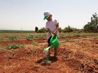 Çocuklara huzur veren çiftlik 'Antalya Orman Çiftliği'
