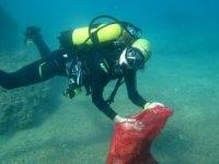Deniz dibinde şaşırtıcı sonuç
