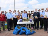Kepez'den sera atıklarından kaliteli organik kompost