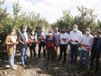 CHP'den Nar hasadına anlamlı destek